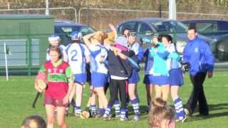 AIB Camogie Championship is