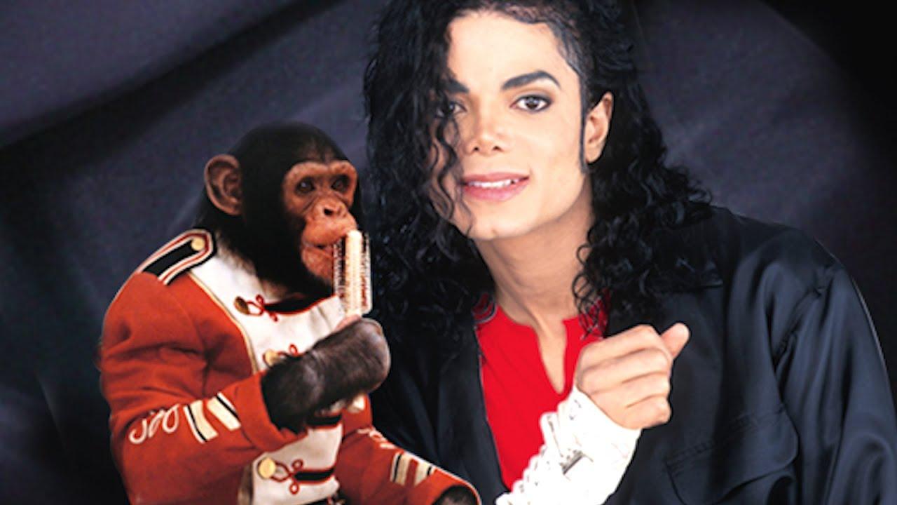 Michael Jackson Fakten
