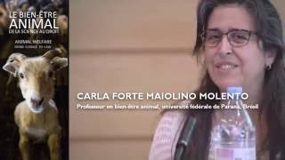 Carla MOLENTO | Animal welfare in Centra/South America (English)