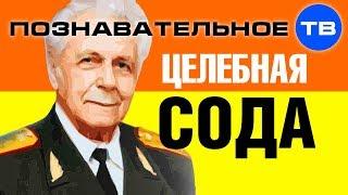 Целебные возможности соды (Познавательное ТВ, Иван Неумывакин)