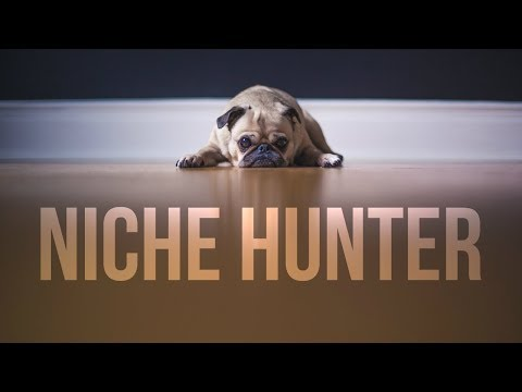 $7500/Month Selling Pet Products? What to Sell on Amazon (Niche Hunter #4) | Amazon Product Research