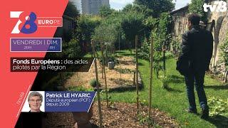 7/8 Europe. Rénovation du mur à pêches de Montreuil et rencontre avec P. Le Hyaric