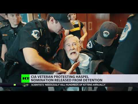 'Took chairman at word': Ray McGovern left bruised for asking on Haspel's part in torture program