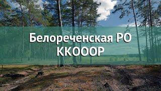 Охота в Краснодарском крае – Белореченская РО ККОООР охота на вальдшнепа в Краснодарском крае