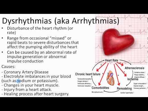 Pathophysiology   cardiovascular   3 of 5 heart disease