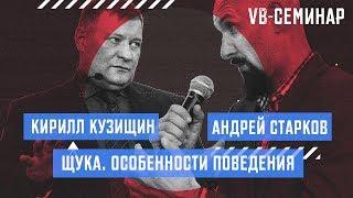 Кирилл Кузищин - Щука. Особенности поведения