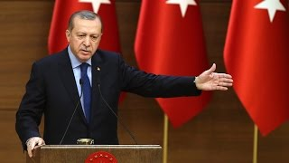 Political instability in Turkey affects economic performance