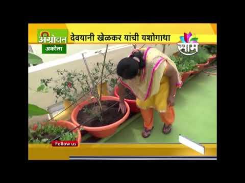 Devyani Khelkars Terrace Farming Success Story