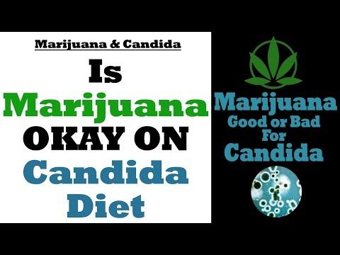 Marijuana And Candida: Does Marijuana Help Candida or Feed Candida?