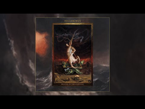 Helleborus • Prayer of the Undying