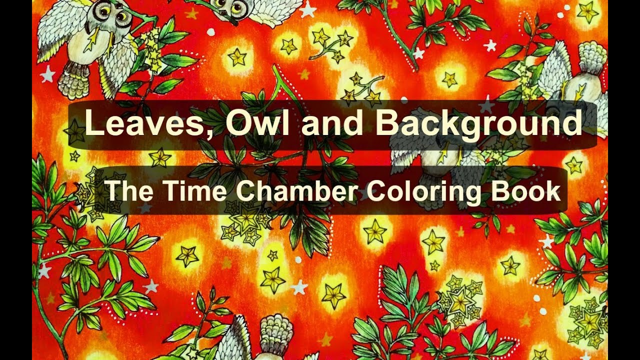 Adult Coloring Book: The Time Chamber | Leaves, Owl and Background ...