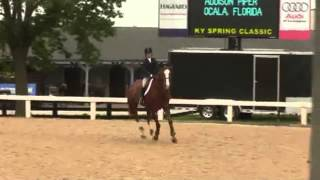 of SUPERFLY ridden by ADDISON PIPER from ShowNet