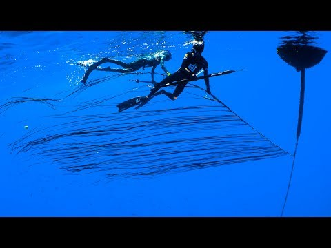 LOOK BEHIND YOU! | Spearfishing Kona, Hawaii