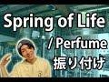 【反転】Perfume/ Spring of Lifeサビ ダンス振り付け