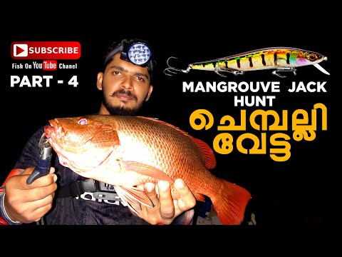 CHEMPALLI FISHING. MANGROVE JACK FISHING. LURE FISHING. FISH ON