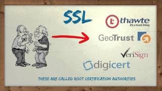 THC Informational #17 SSL/TLS security - A Parody