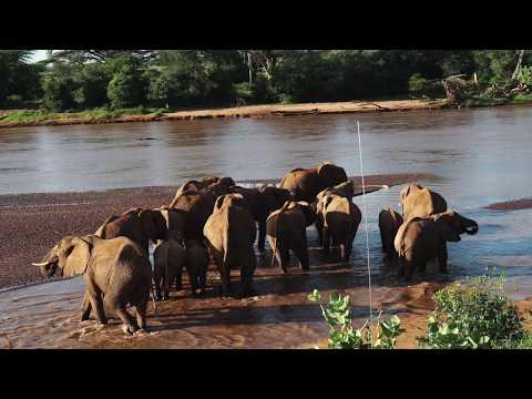 Samburu East Africa