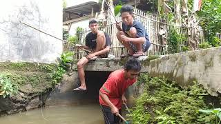 Download Mp3 Mancing Emosi !! || Film Pendek Ngapak Sampang Cilacap