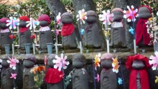 東海道五十三次を歩く会「増上寺」~「東禅寺」(2)_0001.wmv