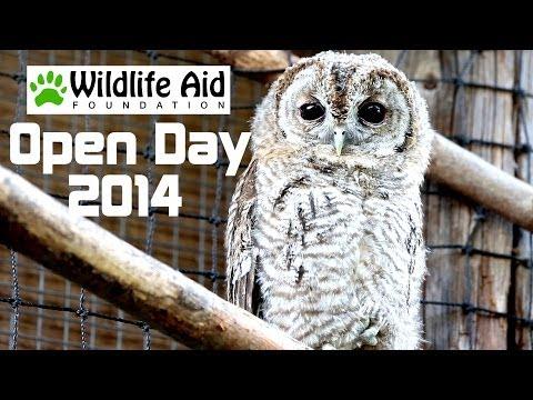 Wildlife Aid Foundation Open Day 2014