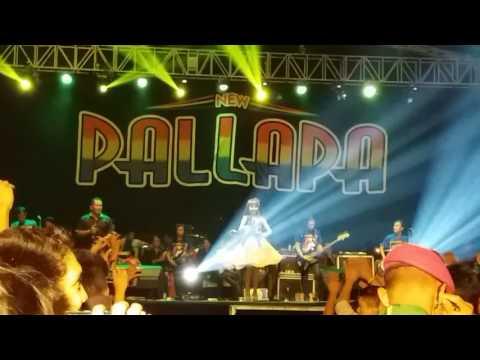New pallapa live jatiwangi