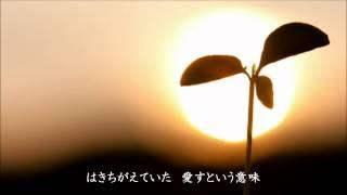 柴田淳 『帰り道』 (カラオケ)