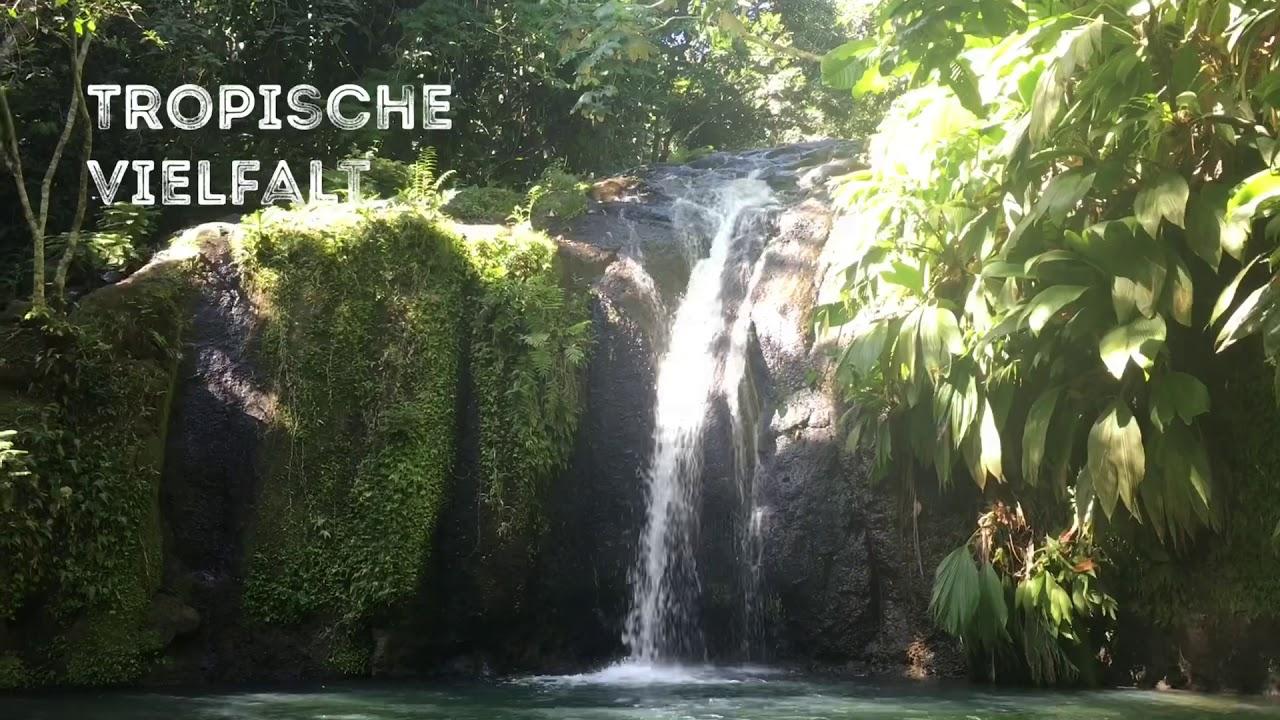 Touren in Guadeloupe mit German Butterfly (Trailer)