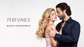 MH: nueva línea de perfumes MARIO HERNANDEZ