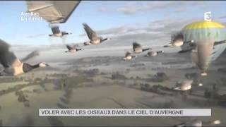 Vu d'ici : voler avec les oiseaux dans le ciel d'Auvergne