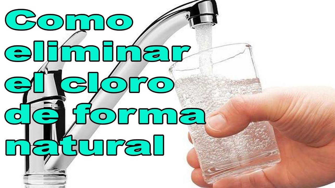 Eliminar cal del agua interesting eliminar los criaderos - Quitar cal del agua ...