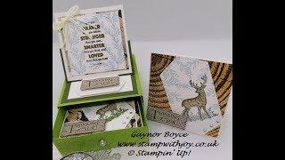3 x 3 Mini cards & Gift box