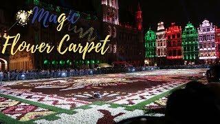 "Brussels Flower Carpet 2018 ""Mexico Theme"""
