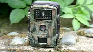 Apeman H45 Trail Camera: 1st & 2nd June 2018