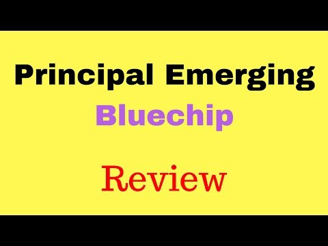 REVIEW: Principal Emerging Bluechip Fund | Best Large & Mid Cap Fund for Long-Term | Fortune Cafe