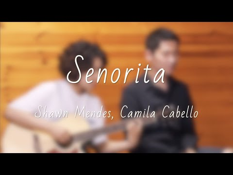 Señorita - Shawn Mendes, Camila Cabello (Elaine Kim X New Authors COVER)