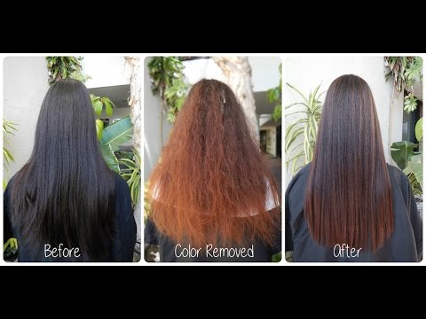 Color Correction | Pravana Color Extractor | NO BLEACH | Black to Warm Brown