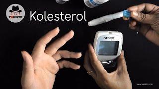 Cara Melakukan Tes Kolesterol