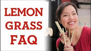 LEMONGRASS: Everything You Need to Know - Hot Thai Kitchen