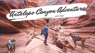 Kayaking into Antelope Canyon with Dogs