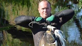 Сом и Сазан на открытии сезона подводной охоты 2019. Новый рецепт рыбы на гриле!