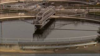 Wastewater Woes: Sewage Spills in SF Bay - KQED QUEST