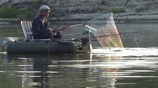 Хороший клев Сазана .Утренняя рыбалка . Река Дон 12 июля .