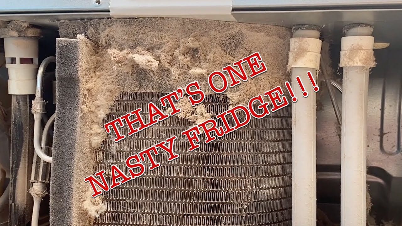 Cleaning the Cooling Coils on your Samsung Refrigerator ~ Keep it Cold!
