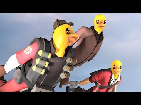 Bonus Quacks.MP4