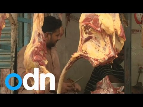Karachi's butchers suffer during heatwave and power cuts