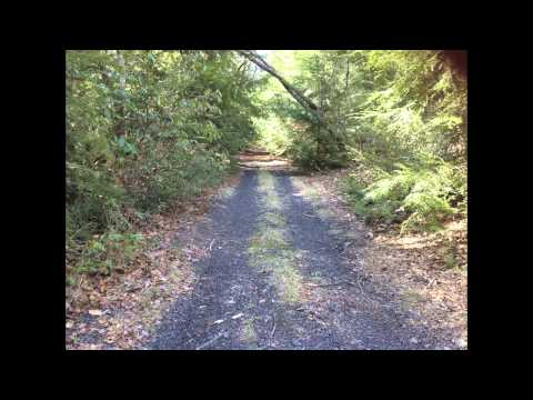 Wilkes-Barre and Eastern Railroad Bed