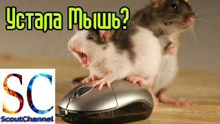 Прокручивает колесико мышки ремонт