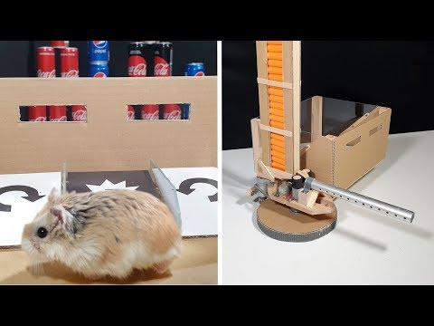 MAJOR HAMSTER uses his NEW AWESOME TOY!