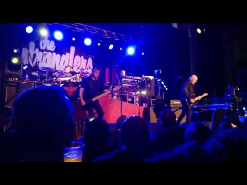 The Stranglers @ Aberdeen Beach Ballroom 9/3/17