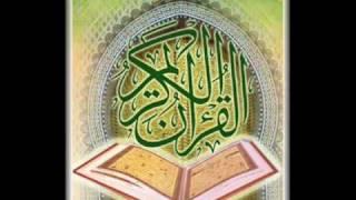 الشيخ اشرف الهوى